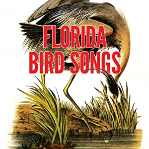 Florida Bird Songs | [Donald J. Borror, Maurice L. Glitz]