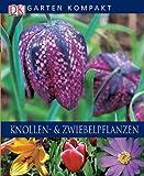Knollen- & Zwiebelpflanzen