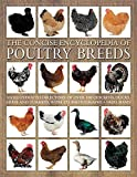 img - for The Concise Encyclopedia of Poultry Breeds: An Illustrated Directory Of Over 100 Chickens, Ducks, Geese And Turkeys, With 275 Photographs by Fred Hams (2015-12-07) book / textbook / text book