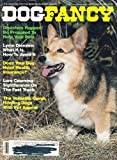 img - for September 1988 Dog Fancy The Versatile Corgi: Herding Dogs With Pet Appeal - Disasters Happen! Be Prepared To Help Your Pets! Lyme Disease: What It Is, How To Avoid It -- Does Your Dog Need Health Insurance? Lure Coursing - Sighthounds book / textbook / text book