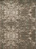 "Loloi Rugs,  JOURNEY COLLECTION,  JOURJO-05DTML76A5,  DK TAUPE / MULTI  7'-6""  x  10'-5"""