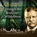 Through the Brazilian Wilderness Audiobook by Theodore Roosevelt Narrated by Andre Stojka