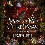Snow After Christmas | David Neth