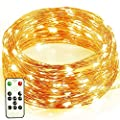 Flasso LED Copper Wire Lights, Dimmable Led Starry String Lights with Remote and Timer- Warm White Fairy Lights for Christmas Wedding Holiday and Party(33ft Copper Wire with 100LEDs)