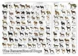 ジグソーパズル:3000スモールピース 動物/犬 (犬の系統図 2) エポック社 21-106