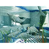 """The Dolphins in Bathroom Interior (3d Rendering) - 24""""W x 18""""H - Peel and Stick Wall Decal by Wallmonkeys"""