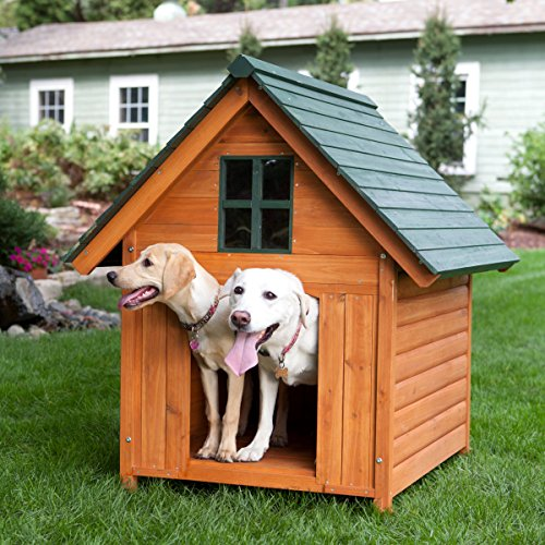 Extra-Large-Outdoor-Dog-House-Dog-Kennel-40w-X-44d-X-47h-Solid-Wood-for-Natural-Insulation-Comfortable-and-Secure-Large-T-bone-A-frame