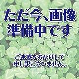 ゴーヤ 種 キン肉ゴーヤマンG 小袋(約10粒)