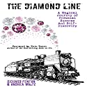 The Diamond Line: A Magical Journey of Personal Success and Self-Discovery Audiobook by Richard Fenton, Andrea Waltz Narrated by Galel Fajardo