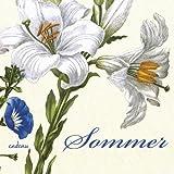 Sommer: Ein Poesiealbum - zusammengestellt von Günter Berg