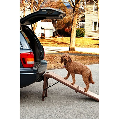 Pet Gear Free Standing Pet Ramp for Cats and Dogs Up to