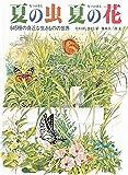 夏の虫 夏の花―645種の身近な生きものの世界 (福音館のかがくのほん)