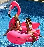 Gigantic Flamingo