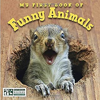 Book Cover: My First Book of Funny Animals