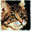 Caron Natura Latch Hook Rug Kit - Tabby