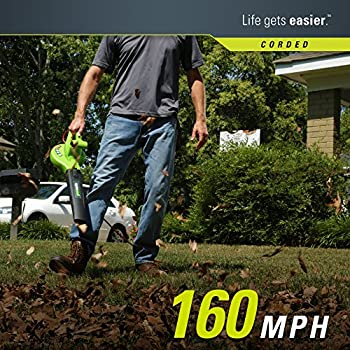 Greenworks 24012 7 Amp Single Speed Electric 160 MPH Blower