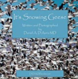 It's Snowing Geese