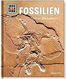 Fossilien - Spuren des Lebens
