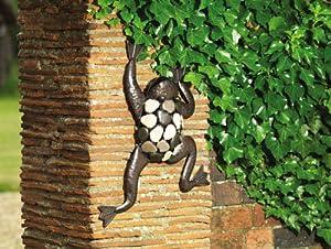 Climbing Wall Frog Wall Art by Gardman Ltd