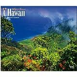 Hawaii 2014 - Wild & Scenic: Original BrownTrout-Kalender - Deluxe [Mehrsprachig] [Kalender]