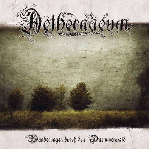 Wanderungen Durch Den Daemmerwald by Aethernaeum
