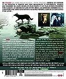 Image de Stalker (édition HD restaurée) [Blu-ray]