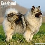 Keeshond Calendar - Dog Breed Calenda...
