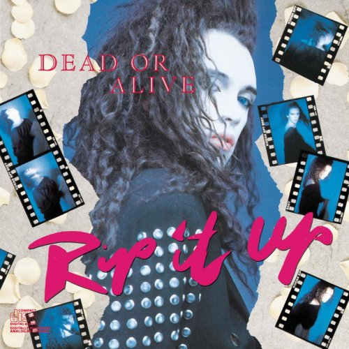 Dead Or Alive - Rip It Up [Us Import] - Zortam Music