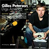 brownswood usa:gilles peterson digs america