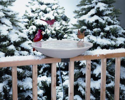 Cheap 20 Inch EZ Heated Bird Bath (ALLIEDPR650)