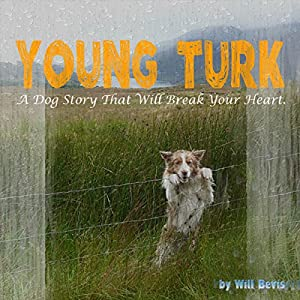 Young Turk Audiobook