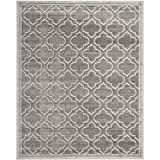 Safavieh Amherst Collection AMT412C Grey and Light Grey Indoor/ Outdoor Area Rug, 6-Feet by 9-Feet