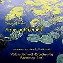 Aquis submersus Hörbuch von Theodor Storm Gesprochen von: Hans Jochim Schmidt