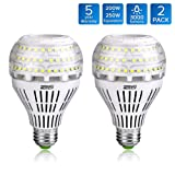 SANSI A21 22W (250-200Watt Equivalent)Omni-directional Ceramic LED Light Bulbs–3000 lumens, 5000K Daylight, CRI 80+, E26 Medium Screw Base Home Lighting (2Pack)
