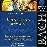 Bach, J.S.: Cantatas, Bwv 35-37
