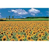 1000ピース 向日葵の丘 1000-121