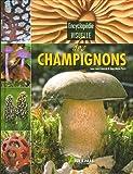 echange, troc Jean-Louis Lamaison, Jean-Marie Polese - Encyclopédie visuelle des champignons