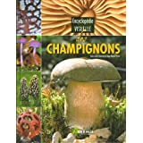 Encyclopdie visuelle des champignonspar Jean-Louis Lamaison