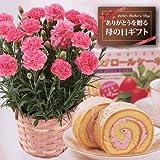 【送料無料】ピンクカーネーションと苺ロールケーキのセット【母の日ギフトお届5/5~5/9】