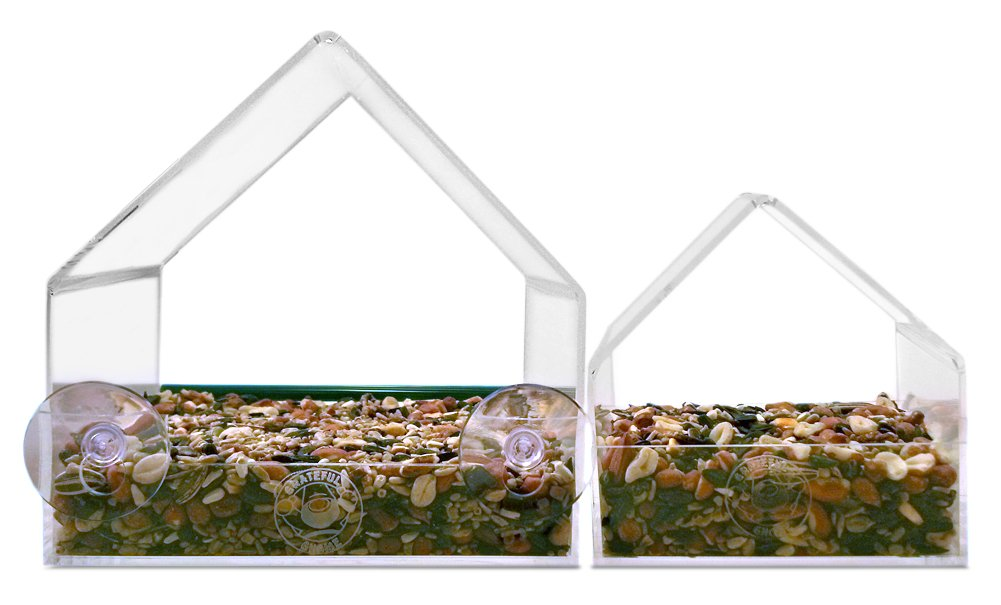 Amazon.com : Grateful Gnome - Giant Window Bird Feeder - Clear ...