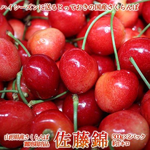 佐藤錦 さくらんぼ 【L~2L/500g×2pcバラ詰め】※6月上旬から出荷