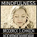 Mindfulness: A Four Week Guide to Inner Peace in a World Gone Mad: Meditation Mindfulness - Life Transformation Series, Book 2 Audiobook by Broderick S. Johnson Narrated by Scott Clem
