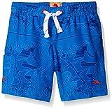 Tommy Bahama Boys' Infant Hawaiian Leaf Trunk, Blue, 24 Months