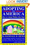 Adopting in America: How To Adopt Wit...