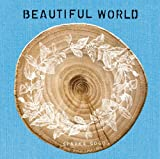 BEAUTIFUL WORLD(初回生産限定盤)(DVD付)