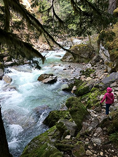 Hiking with Valentine - Stetattle Creek Trail, North Cascades National Park