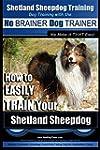Shetland Sheepdog Training | Dog Trai...
