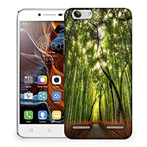 Snoogg Small Path In Forest Designer Protective Phone Back Case Cover For Lenovo K5 Vibe