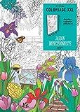Coloriage XXL Jardin impressionniste