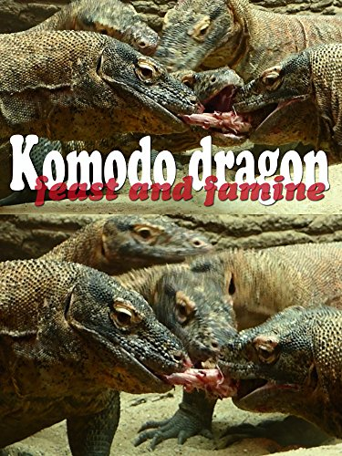 Komodo dragon. Feast and famine on Amazon Prime Instant Video UK